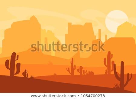 Wektora cartoon stylu hot zachód pustyni Zdjęcia stock © curiosity