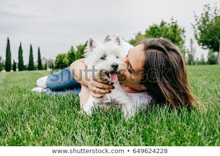 собака · улице · женщину - Сток-фото © chesterf