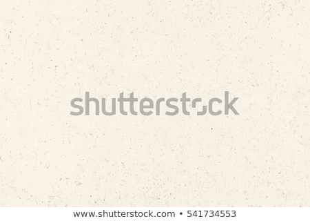 grunge paper vector texture Stock photo © frescomovie