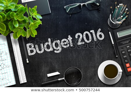 Black Chalkboard with Budget 2016 Concept. 3D Rendering. Stock photo © tashatuvango