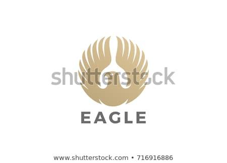 elegáns · vektor · embléma · sablon · luxus · keret - stock fotó © maryvalery