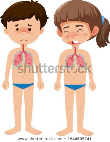 дыхательный · анатомии · иллюстрация · аннотация · науки - Сток-фото © bluering