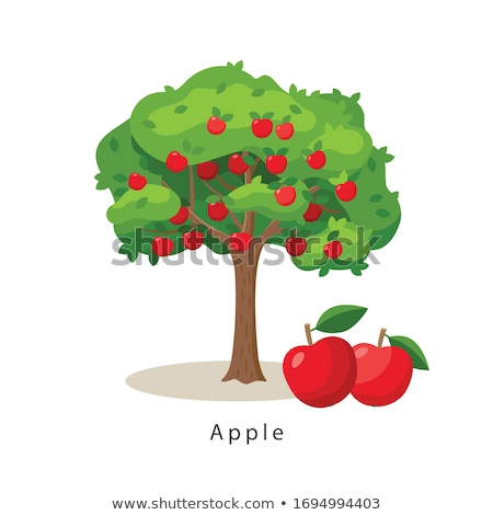 stilisierten · Apfelbaum · Illustration · weiß · Baum · Bau - stock foto © krisdog