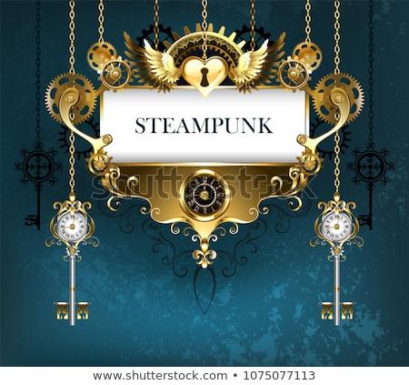 Simétrico steampunk bandeira decorado padrão dourado Foto stock © blackmoon979
