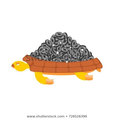 Bitcoin is treasure. Turtle and Cryptocurrency. Vector illustrat Stock photo © popaukropa
