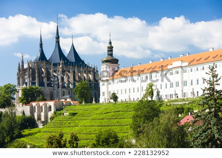 Jesuit College and St. Barbara's Church in Kutna Hora Stock photo © benkrut