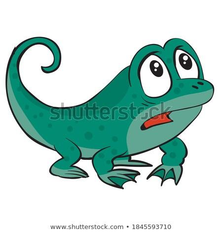 Scared Cartoon Salamander Stock photo © cthoman