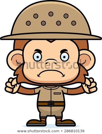 Stock fotó: Rajz · mérges · majom · néz · állat · grafikus