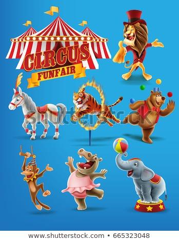 Circus Clown Mascot Stock photo © patrimonio