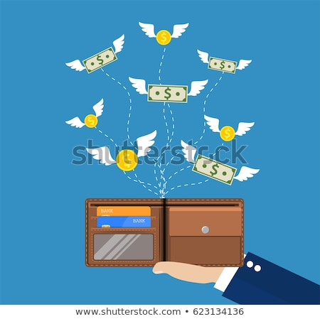 Banknotes and coins with wings flying away from wallet Stock photo © MarySan