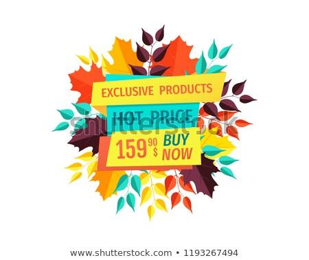 Verkoop promo embleem vallen bladeren Stockfoto © robuart