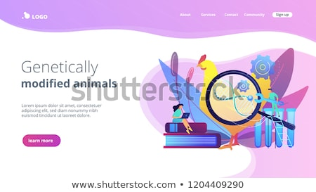 Genetically modified animals app interface template. Stock photo © RAStudio