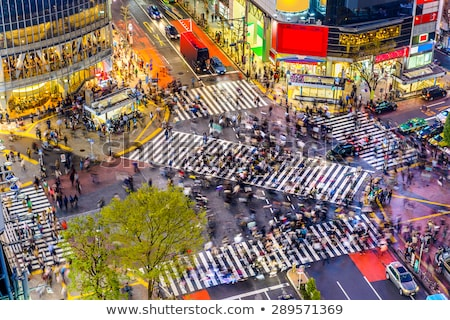 Przejście dla pieszych Tokio Japonia spaceru ludzi słynny Zdjęcia stock © alphaspirit