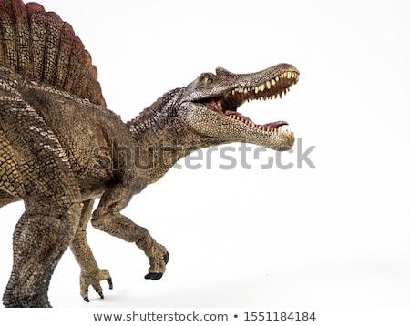 Dinozor beyaz örnek arka plan sanat hayvan Stok fotoğraf © colematt