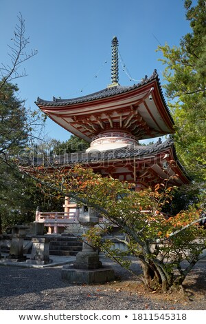 Temple jardin kyoto Japon bâtiment forêt Photo stock © daboost