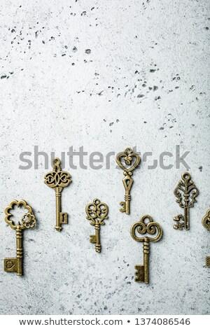 muitos · velho · porta · bazar · metal · segurança - foto stock © melnyk