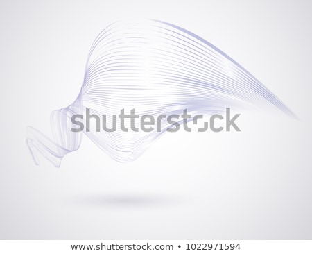 abstract white background with blue contour lines Stock photo © SArts