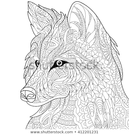 Fuchs · Kopf · Vektor · Zeichnung · rot · Business - stock foto © netkov1