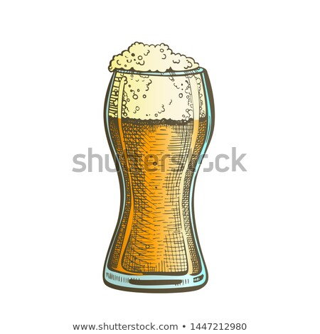 Drawn Standard Pub Glass Color Foam Beer Vector stock photo © pikepicture