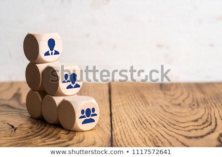 Structuur tabel illustratie ingesteld business netwerk Stockfoto © Blue_daemon