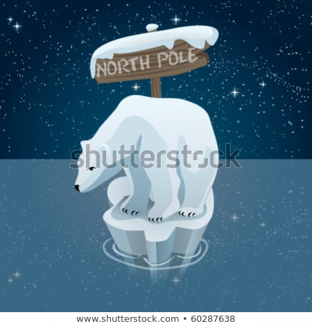 Buzdağı beyaz ayı vektör izometrik Stok fotoğraf © leedsn