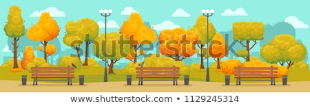 bench and trees autumn season in park vector stock photo © robuart