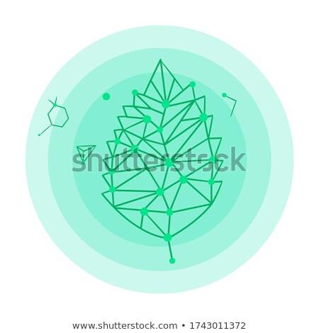 Icon blad hologram logo groen blad communie Stockfoto © robuart