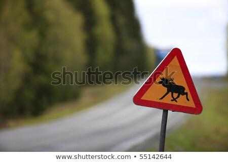 Suécia sinal da estrada verde nuvem rua assinar Foto stock © kbuntu