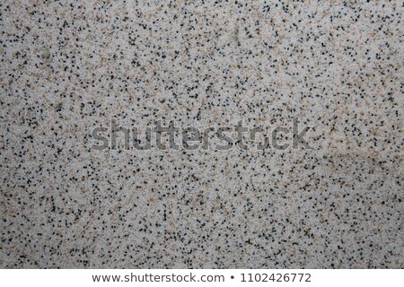 Plaster with  marble crumb - texture Stock photo © pzaxe