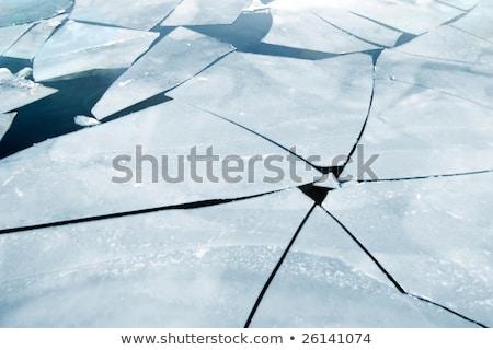 Lap jég lebeg sarkköri óceán tájkép Stock fotó © meinzahn