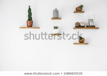 wall shelf stock photo © obradart