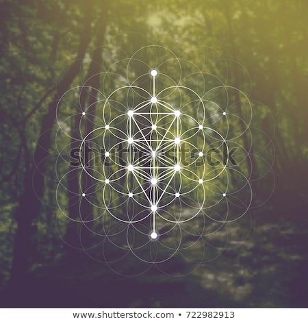 магия · судьба · духовность · иллюстрация · человека · лице - Сток-фото © grechka333
