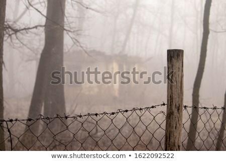 old fence stock photo © taden