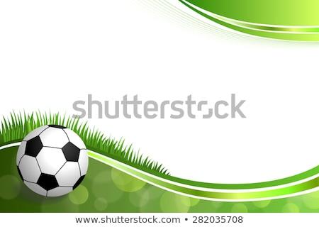 futebol · cartaz · vetor · futebol · bola · projeto - foto stock © rioillustrator