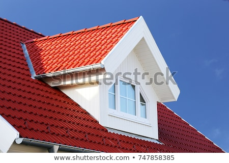 Red roof Stock photo © Nobilior