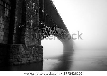 Mississippi morning fog Stock photo © dgilder