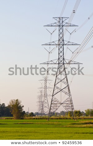 electricity high voltage power pylon in paddy field Stock photo © tungphoto