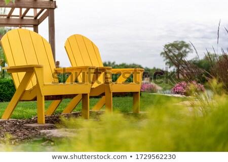 желтый стульев два зеленая трава древесины домой Сток-фото © kimmit