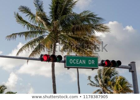 Panorámica vista océano unidad placa de la calle palmera Foto stock © vwalakte