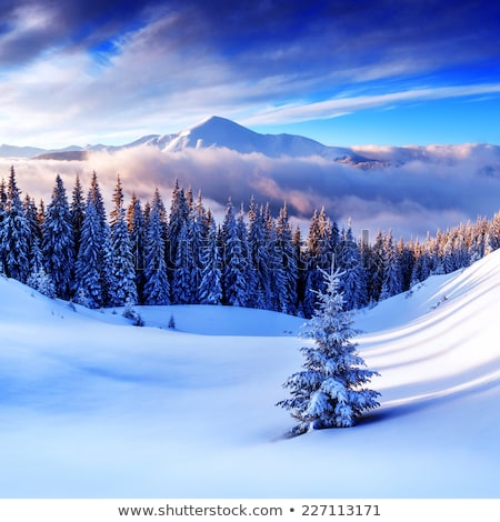 Winter mountains at evening and sunlight clouds Stock photo © BSANI