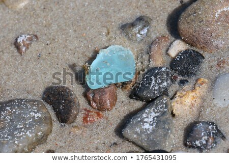 wet blue glass pieces polished by the sea  Stock photo © marylooo