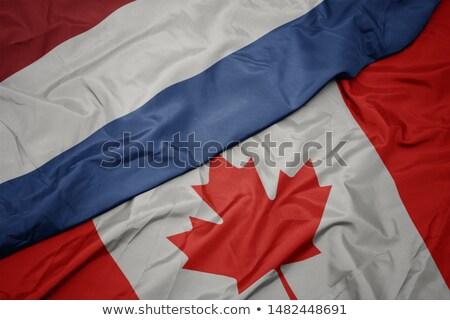 Stok fotoğraf: Kanada · Hollanda · bayraklar · vektör · görüntü · bilmece