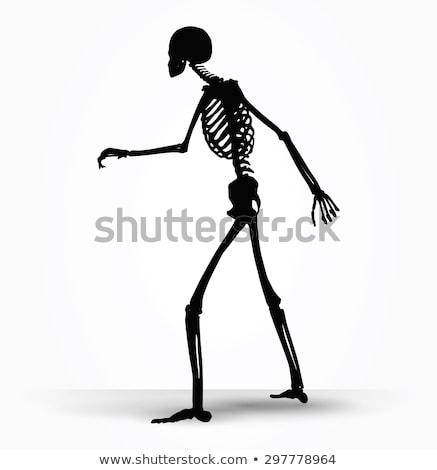 skeleton silhouette in shuffle pose stock photo © istanbul2009