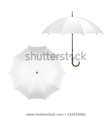 Esernyők fa kék útvonal fa levél Stock fotó © Kotenko