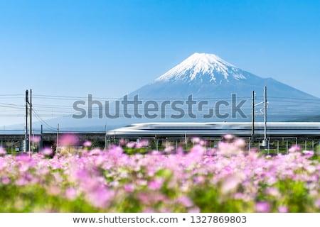 Shinkansen Fuji Stock photo © vichie81