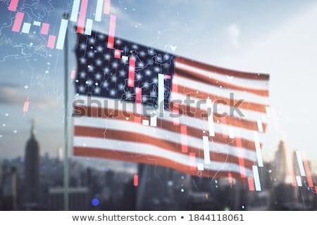 globe and usa flag stock photo © devon