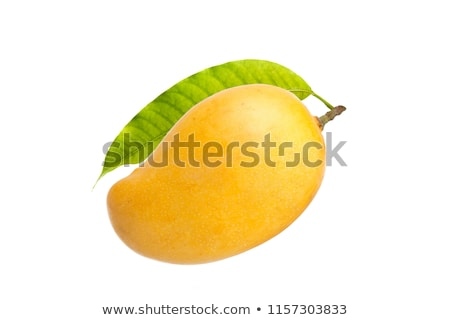 A green and a yellow mango Stock photo © bluering