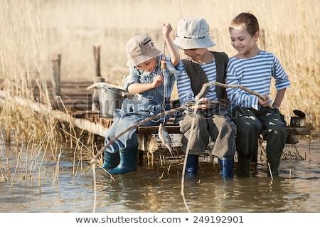 jelenet · folyó · mező · illusztráció · fű · tájkép - stock fotó © bluering