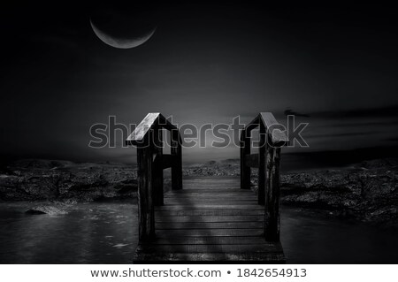 A black girl crossing the wooden bridge Stock photo © bluering