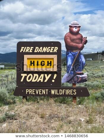 Tűz veszély ma medve felirat kabala Stock fotó © cboswell